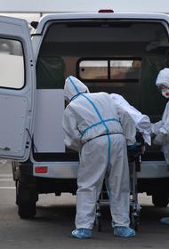 В России за сутки скончались 997 пациентов с коронавирусом