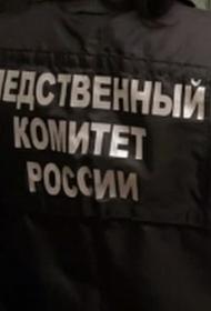 В Вологде возбудили уголовное дело после исчезновения девятилетней девочки