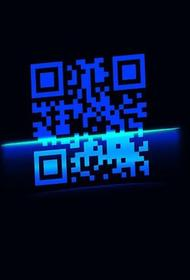 В Санкт-Петербурге с 1 ноября вводятся QR-коды