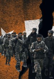 Турция может начать новую военную операцию в Сирии