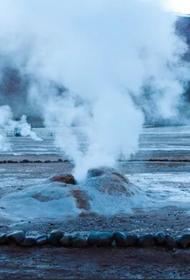 Экстремофилы помогут с утилизацией металлических отходов