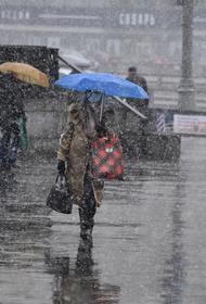 Синоптик Тишковец предупредил москвичей о мокром снеге с дождем до утра четверга