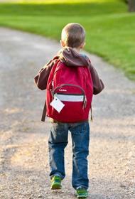 Минпросвещения РФ рекомендует школам объявить каникулы с 30 октября по 7 ноября