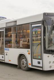 В Челябинской области увеличился объем пассажирских перевозок