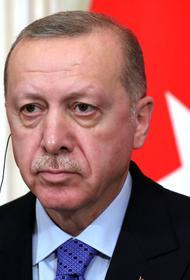 Эрдоган объявил о высылке послов десяти стран