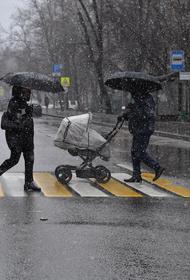 Синоптик Вильфанд предупредил о дожде и мокром снеге в Москве в выходные