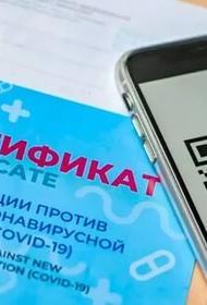 В Хабаровском крае пока еще думают над целесообразностью введения QR-кодов