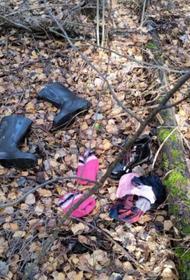 СКР: Десятилетнюю девочку нашли в лесу под Владимиром рядом с телом матери
