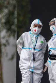 В России зарегистрировали новый максимум смертей от COVID-19 – 1 106