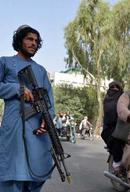 Очевидец сообщил, что талибы открыли стрельбу в очереди у авиакасс в Кабуле