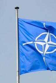 Первый вице-спикер Рады Корниенко заявил об ускорении движения Украины в НАТО