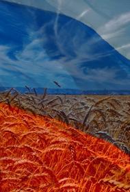 Отечественное сельское хозяйство можно возродить радикальными мерами