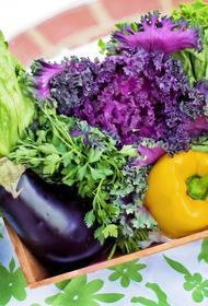 Диетологи рассказали как сделать прием пищи осознанным