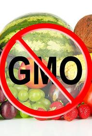 Только в одной Америке более 70% всей переработанной пищи содержит в себе ГМО