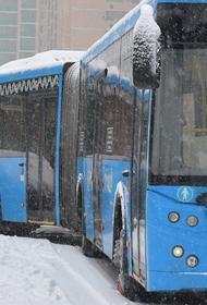 """У станции метро """"Выхино"""" столкнулись два рейсовых автобуса"""