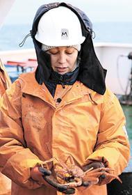 Экспедиция «АМК 81»: молодые российские ученые исследуют Арктику и не спешат за границу