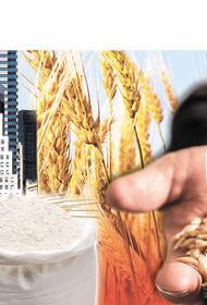 Ввоз в Россию соевой ГМО-продукции без регистрации продлили на год