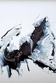 «Умка» предупреждает Вашингтон: военная экспедиция в Арктике с элементами науки и шоу