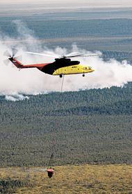 В России число лесных пожаров ежегодно снижается, а их площадь растет