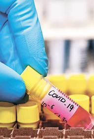 Эпидемиологи ожидают начала четвертой волны COVID-19