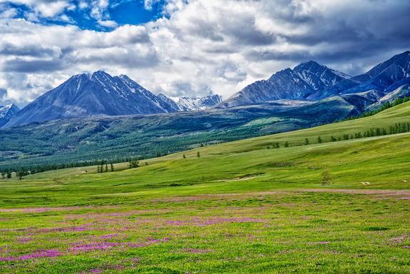 """17 россиян не могут покинуть Монголию из-за вспышки """"бубонной чумы"""""""