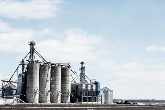 Беларусь приостановила транзит российской нефти в направлении Украины