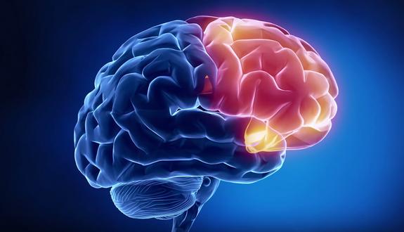 Учёные научились озвучивать мысли