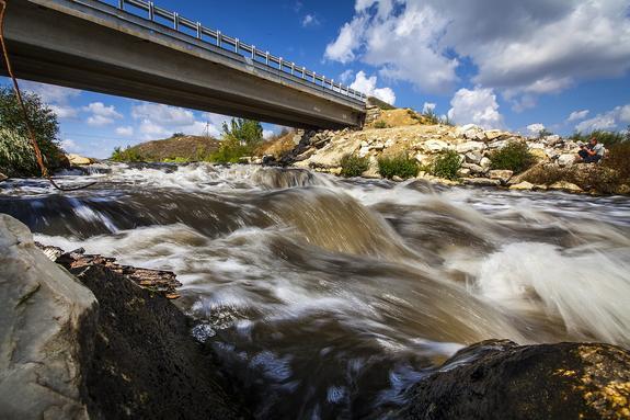 В Челябинске погибла рыба в реке Миасс из-за прорыва канализации