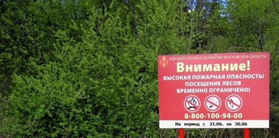 В Подмосковье введено временное ограничение пребывания граждан в лесах и въезд в леса машин