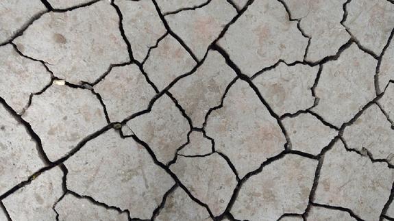 В результате землетрясения на Филлипинах погиб человек