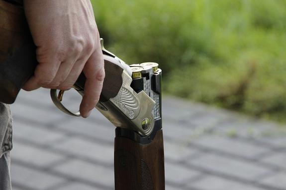 Петербуржец задержан за стрельбу из ружья в сторону жены и дочери