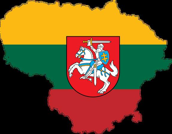 Литва: Россия в этом году может за сутки напасть на страны Балтии