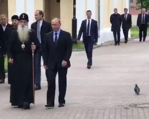 «Встреча» Путина с голубем стала мемом в соцсетях