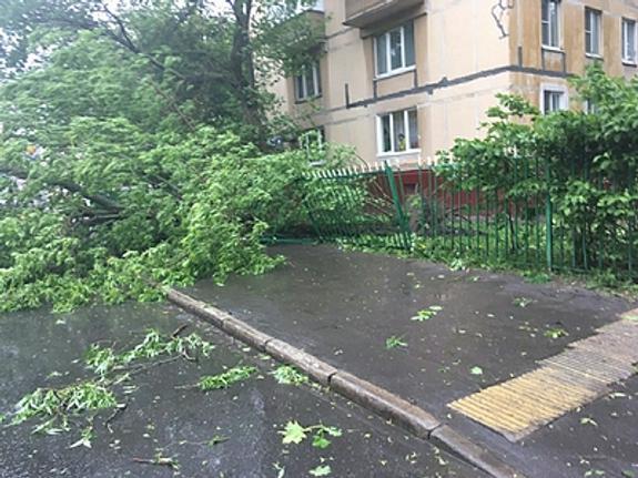 В связи с ухудшением погоды в Москве объявили штормовое предупреждение