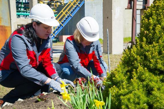 46 тысяч растений пополнили территории производств РМК