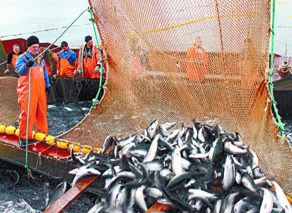Серебряный век рыболовства
