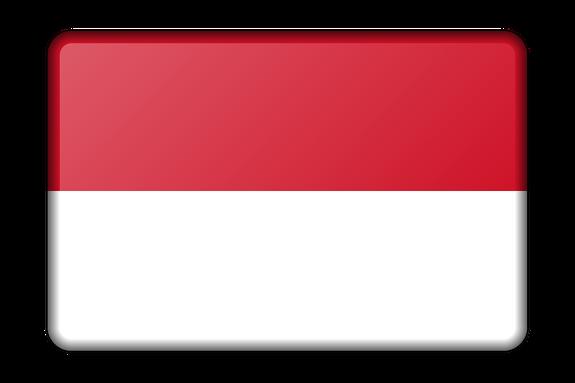 Российские системы ПВО заинтересовали Индонезию