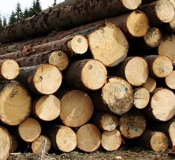 Минстрой предлагает возводить в России деревянные дома
