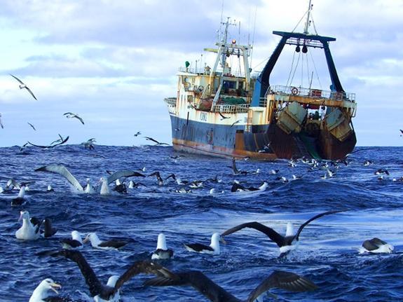 Верховный Суд готовит изменения для рыболовства