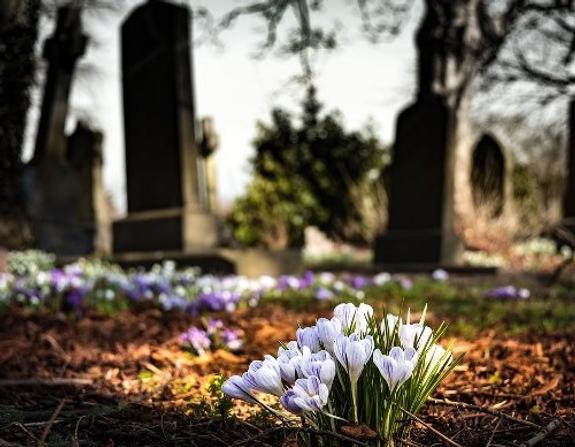 На кладбище под Хабаровском нашли останки главы похоронного бюро