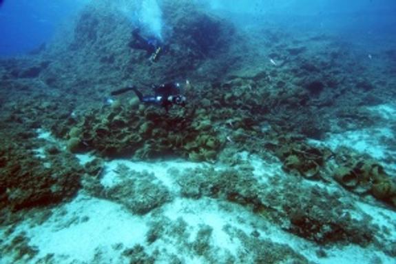 Минобороны скрывает находки со дна Черного моря