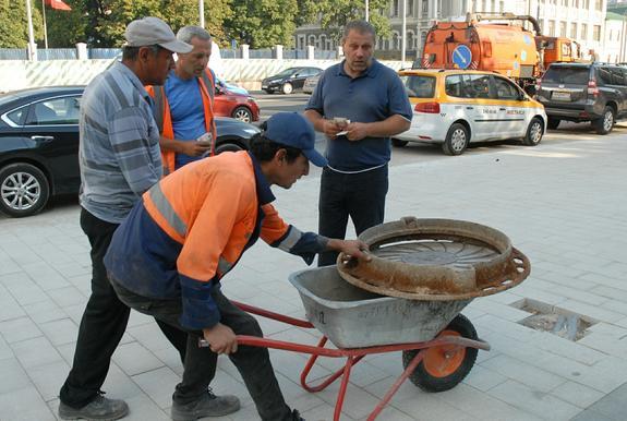 Жители Петербурга опасаются тараканов и ухудшения криминальной обстановки