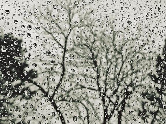 Синоптики обещают затяжные дожди в Москве
