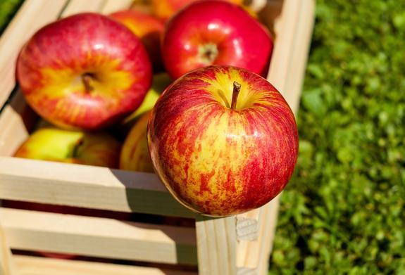 Яблоки и томаты вернут здоровье легких заядлым курильщикам