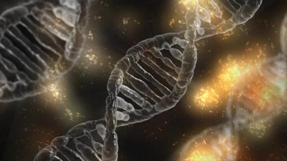 Ученые обнаружили источник молодости и старения