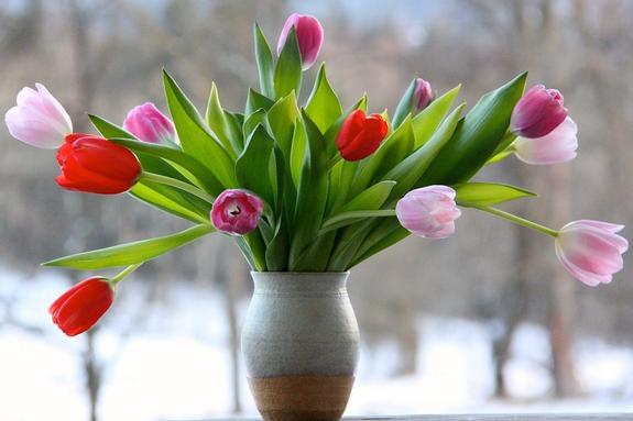 Названы легкие способы сохранить подаренные на 9 марта цветы