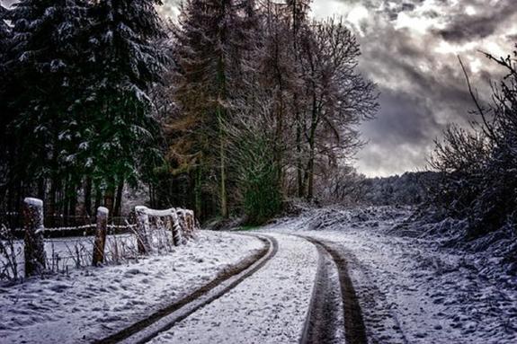 Нетрезвый подросток замерз в подмосковном лесу