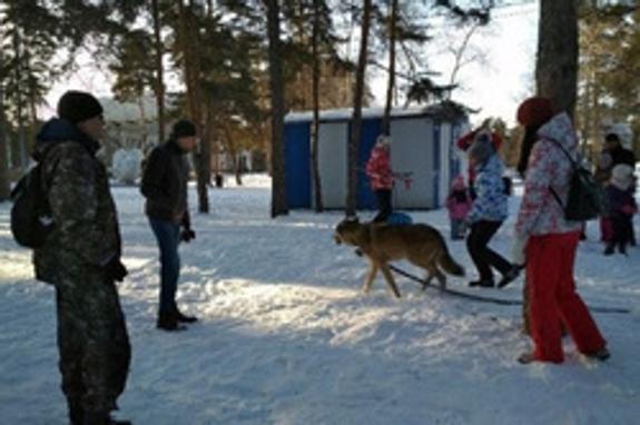 Житель Челябинска  возмущает горожан прогулками в парке с волком
