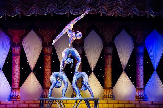 В Тульском цирке акробатка вылетела с батута и разбилась