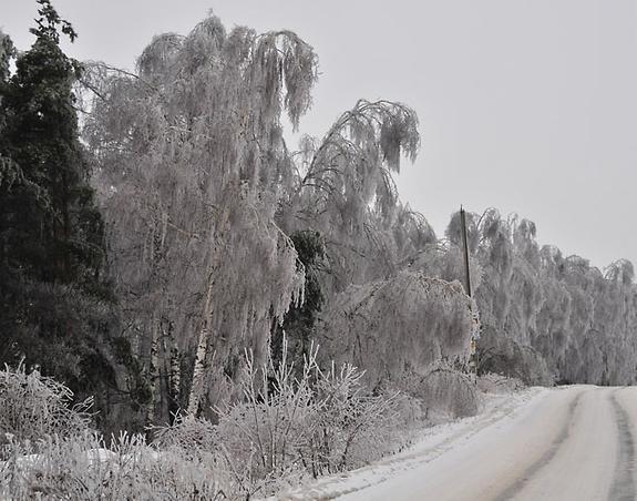 Прошедшая зима была в Москве одной из самых снежных